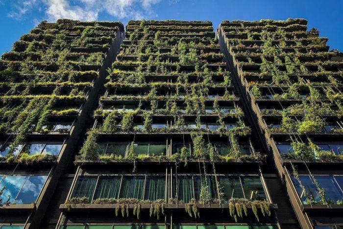 """FÉNYKÉP: A """"ONE CENTRAL PARK"""" Sydney-ben - körülbelül 35.000 növény borítja"""