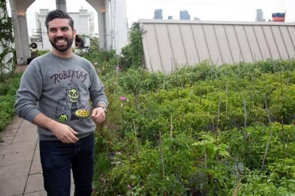A Rafael Espinal Tanácstag által előterjesztett törvényjavaslat csomag minden új épületnél megkövetelné a zöldtető telepítését. Fotó Espinal irodája jóvoltából.