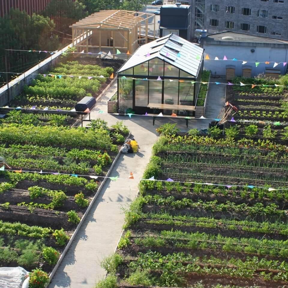 Urban Farm - Koppenhága, Dánia